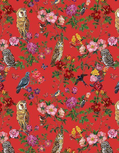 """Collection Duo – Tshirt en coton """"Le Royaume des oiseaux"""""""